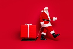 Photo portrait of fat trendy white bearded santa claus walking pulling sleigh with big present with open mouth isolated on vivid red colored background