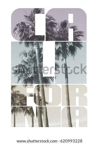 Photo print California and palm , tee shirt graphics, typography