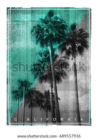 photo print california palm...