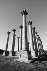 Photo shows the Friends of the National Arboretum monument at National Arboretum park in black and white. These columns are originated from US Capitol building.