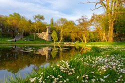 Photo taken in Nicolae Romanescu Park from Craiova, Romania at sunset. The photo consists of a pond, a meadow with flowers and a suspended bridge in the background.