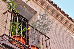 photograph in angle against  a balcony with a lemon tree and an olive tree in a street of Toledo, Spain, balconies with wrought iron grills, art,