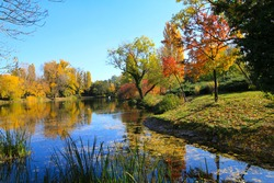 Photograph of a Pond in a Park with Grass in Autum Fall with Colorful Leaves Red Yellow and Blue Sky