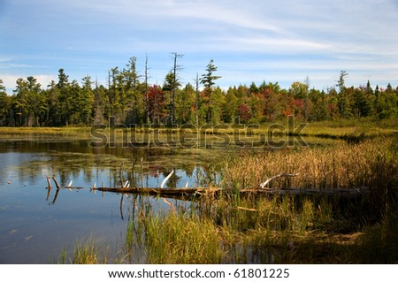 Photograph of a small lake in the northwoods of Wisconsin, taken in the beauty of the Autumn colors, surrounded by bogs, pines and spruces showing the wildness and remoteness of this wilderness area.