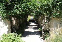 Photograph of a walking path with natural stone pillars and green leaf foliage growing around and overhead with sun shining down. Full color image.