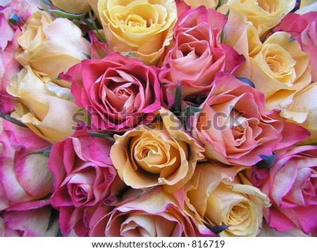 photograph of a wedding bouquet with peachy yellow and pinkish red roses
