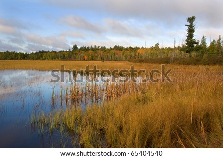 Photograph of an early fall northwoods lake, surrounded by bog, in northern Wisconsin.