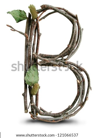 Photograph of Natural Twig and Stick Letter B