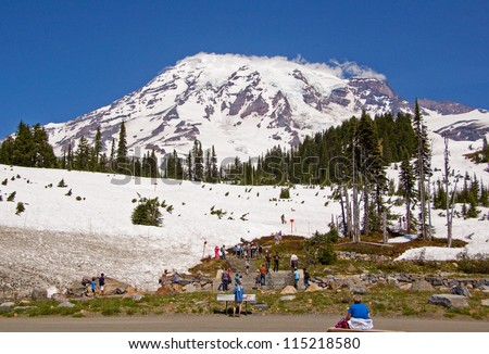 Photograph of one of the many views of grand Mount Rainier while within Mount Rainier National Park.