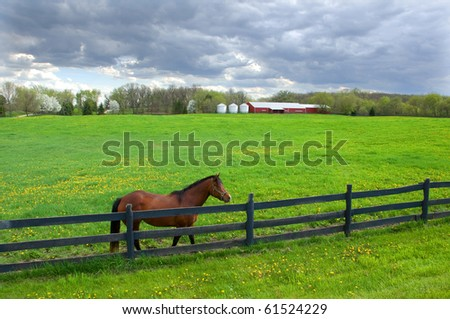 Photograph of the brilliant green of a spring pasture, with a horse at the fence and the stables in the back.  Beautiful sky enhances the green of the pasture.