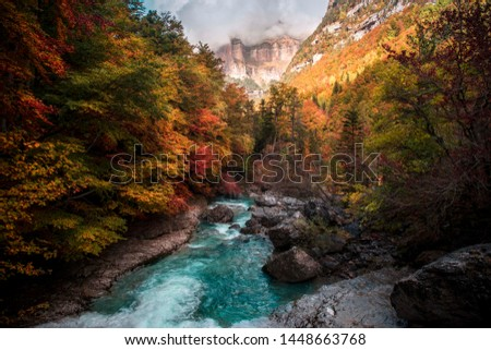 Photograph of the river Arazas on its way through the Ordesa valley, taken in autumn with those orange colors. Foto stock ©