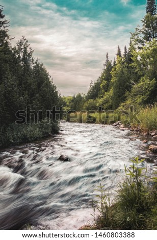 Photograph shows the beautiful credit river running down stream along side this gorgeous forest surrounding it and providing a perfect balance for wildlife and humans alike.