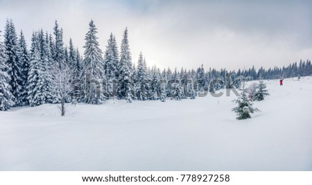 Photographer takes picture in winter mountains. Fantastic morning view of mountain hills with snow covered fir trees. Bright outdoor scene, Happy New Year celebration concept.