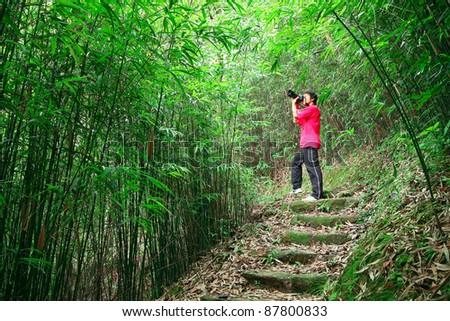 photographer taking photo in bamboo path