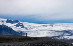 Photographer taking picture of Beautiful Icelandic landscape with Glacier and bird flying above
