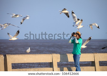 Photographer taking seagulls photo