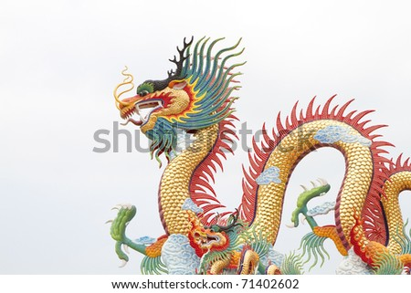 Photos colorful dragon and white background.