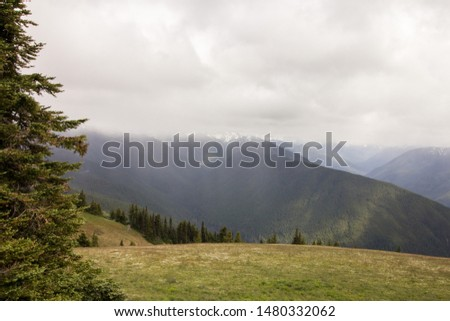 Photos from the Olympic Peninsula and Olympic National Park.