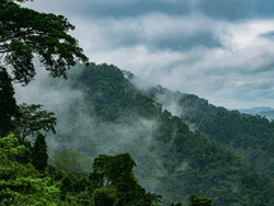 Photos of Fog and mountains at Khao yai National Park , Thailand.