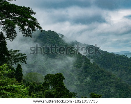 Photos of Fog and mountains at Khao yai National Park , Thailand. stock photo