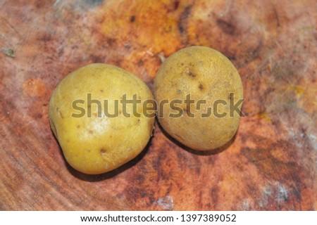 photos of fresh potatos with nature background.