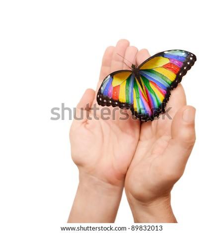 photoshoped butterfly (originally a blue morpho) on a man hands.