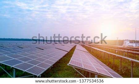Photovoltaic solar panels at sunrise and sunset. #1377534536