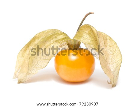 Physalis with leaves isolated on white background