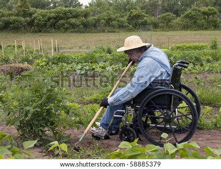 physically challenged man in a wheelchair weeding his garden Stock photo ©