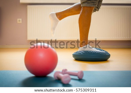 Physiotherapy ball and weights with equilibrium pillow