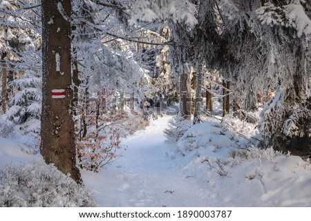 Piękna zima w górach Gorcach- świeży śnieg utworzył niesamowity krajobraz. Beskidy, Polska. Zdjęcia stock ©