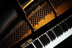 Piano close up. Grand piano detail Open inside music instrument closeup