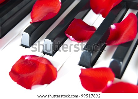 Piano with red petal rose