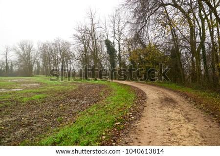 Pianura Padana Landscape #1040613814