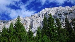 Piatra craiului rocky crest raising above wild fir forests. Carpathia, Romania