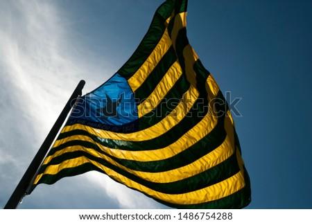 piaui flag brazilian state symbol