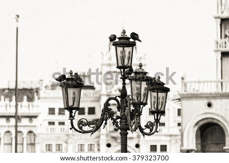 Piazza San Marco with streetlight with pigeons in Venice, Italy. Monochrome photo background of the venetian historic place. Black and white photo.