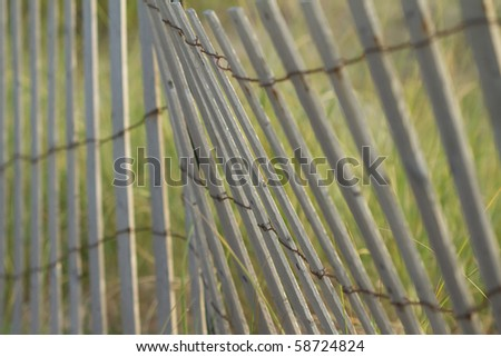 Picket Beach Fence with beach grass