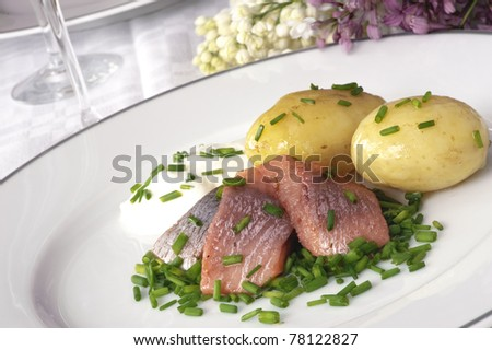 Pickled herring with new potatoes plus sour cream and chopped chives
