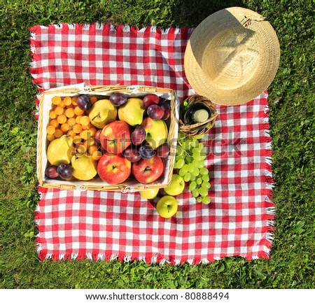Picnic at meadow, top view