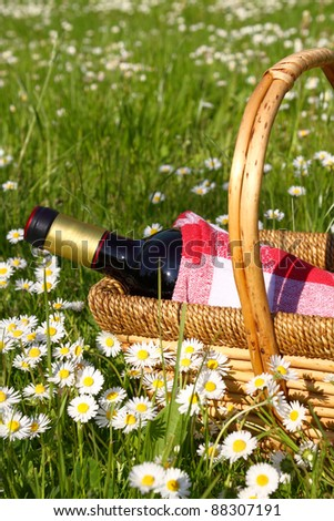 Picnic basket filled with bottle of red dry vine placed on grass