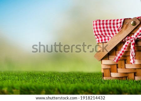 Picnic Basket Grass Garden Concept Holiday Weekend Spring Summer Vacation Сток-фото ©