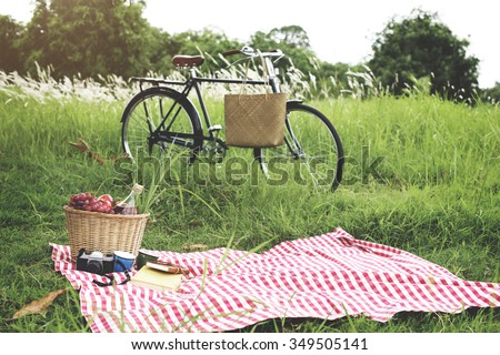 picnic basket handbag vacation...