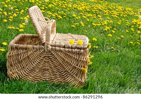 Picnic basket in a field of dandelions