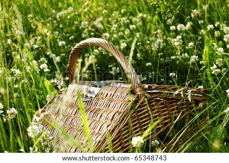 picnic basket in green grass