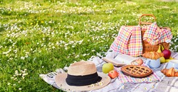 Picnic basket on the green grass in the park. Delicious food for lunch outdoors. Sweet pastries, drinks and fruits. Nice day in summer. High quality photo. Copy space
