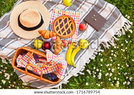 Picnic basket on the green grass in the park. Delicious food for lunch outdoors. Sweet pastries, drinks and fruits. Nice day in summer. Above. Copy space. Soft focus.