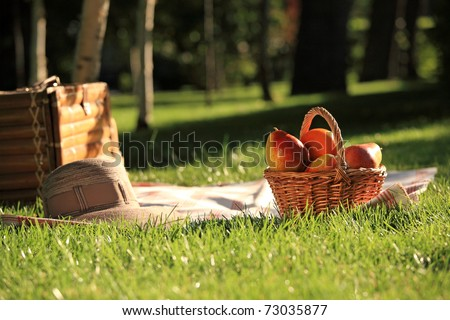 Picnic basket with fruits on grass in summer park