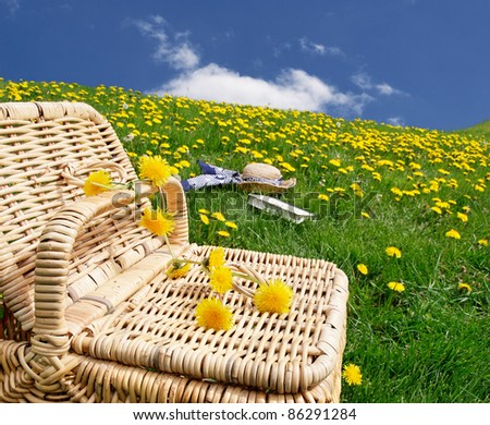 Picnic basket with hat and book in the distance