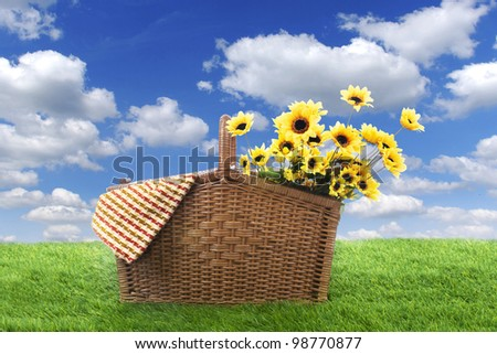 Picnic basket with woven and sunflowers, shot on the green grass  at in spring or summer